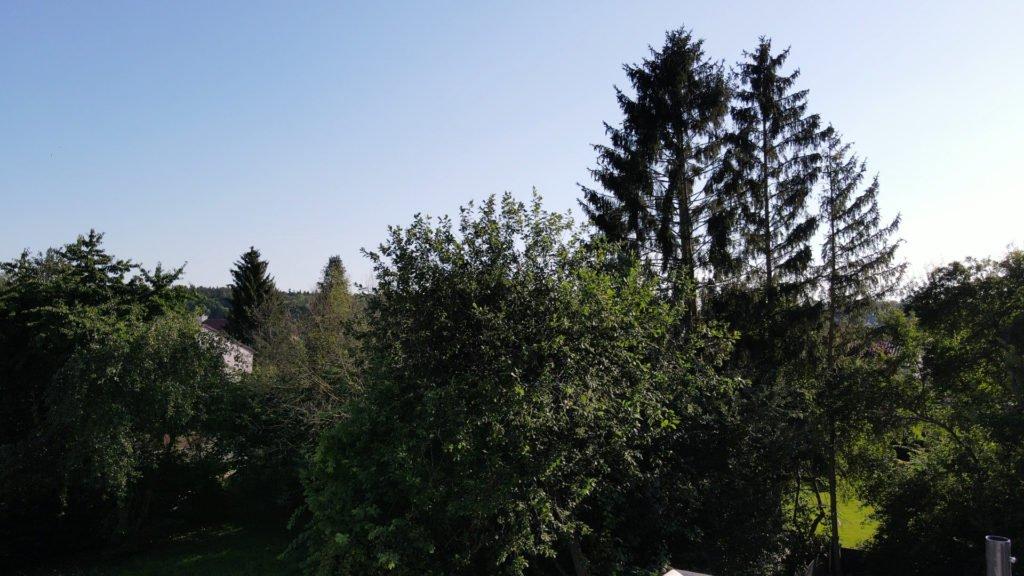 Mavic Air 2 1080p - 1x Zoom