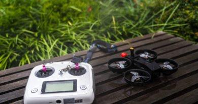 Fernsteuerung und Drohne